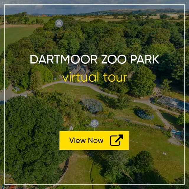 Dartmoor Zoological Park Virtual Tour - Tourist Attraction Virtual Tour
