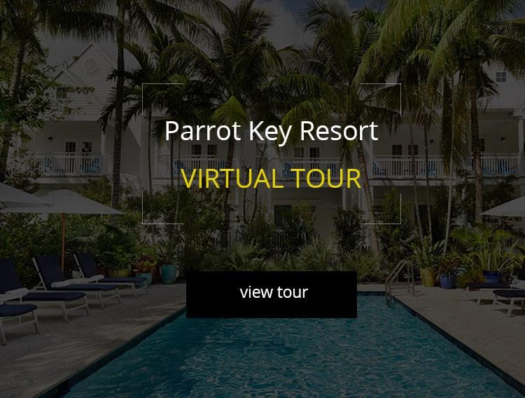 parrot key large thumbanil